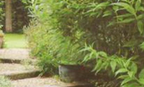 Jardinería Gorliz