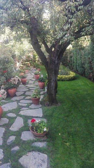 jardineria nomeolvides