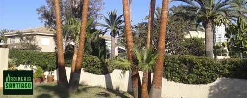 destacado jardineria santiago