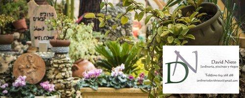 Jardinería David Nieto